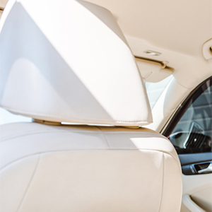 Car Upholstery Fatliquors